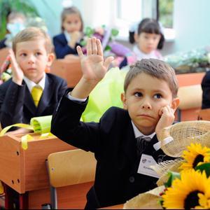 Школы Волоконовки