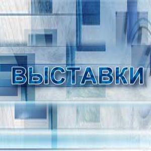 Выставки Волоконовки